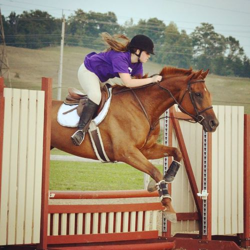 Forever inlove with this photo Horse Equestrian Horseback Riding Jumping Hunter Summer Teen Love Enjoying Life
