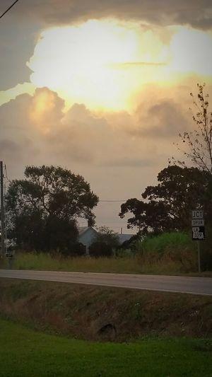 Todays sunset , Louisiana Hwy.339 Louisianaphotography Eye Of Ky Natural Beauty Louisiana Skies Louisiana Beautiful Nature Natural Simplicity Sunset_collection EyeEm Best Shots - Sunsets + Sunrise Louisiana Sunsets