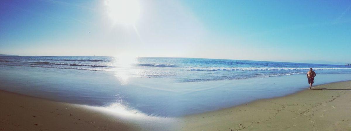 Sea California Enjoying The Sights Relaxing