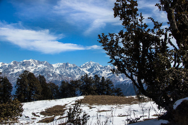 The snow clad Himalayas. Mountains HimalayaScape Himalayas, India Trek Solo Landscape Vegetation Blue Sky Green Human Settlement First Eyeem Photo