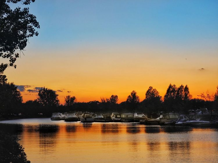 Sunset Reflection Tree Sky Scenics No People Water Lake Tranquility Beauty In Nature Tranquil Scene Nature Outdoors Marina Lachine Montréal Boats At Sunset