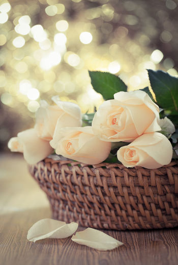 Close-up of roses in basket on table