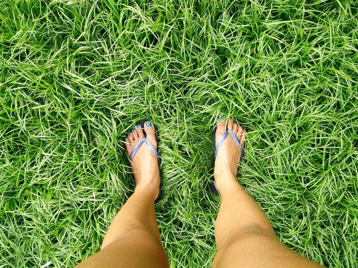 Where do I go from here? Grass Feet Travel Thegreatoutdoors-2015eyeemawards Thetraveler-2015EyemAwards VSCO Vscocam Vscocebu Open Edit Showcase: December