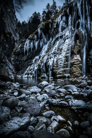 scenic frozen