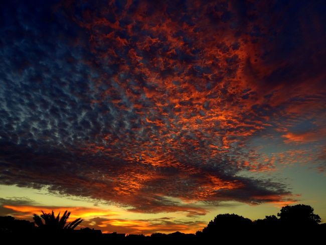 Another afternoon with red skies after sunset in Muchavista, El Campello, Alicante, Spain. EyeEm Nature Lover EyeEm Best Shots Eye4photography  Nature Landscape Sunset Clouds And Sky Light And Shadow Taking Photos Photography