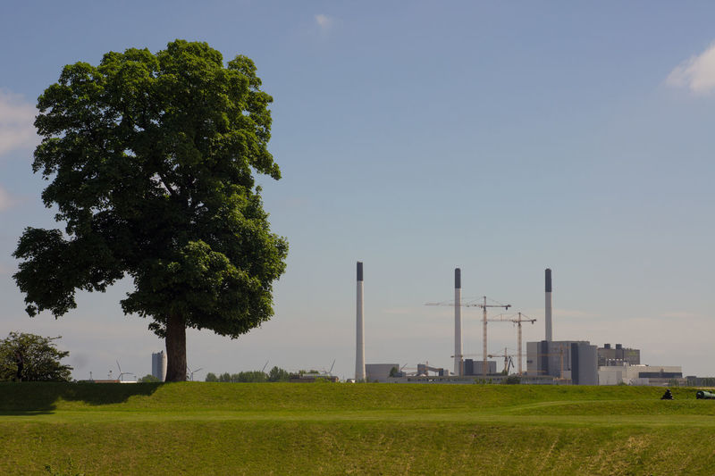 Lone tree Building Exterior Built Structure Clear Sky Day Factory Grass No People Sky Smoke Stack Tree