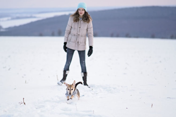 Girl walks the small dog in woolen clothes in the snow during winter time