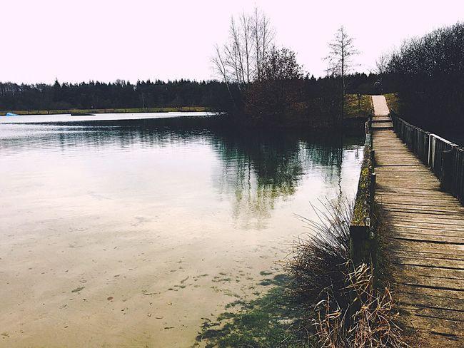 Relaxing Spring 2016 Warmeswetter Fresh Enjoying Life GERMANY🇩🇪DEUTSCHERLAND@ Travel Filter Urlaubserinnerungen See Lake Naturschutzgebiet Netherlands Niederlanden Schloss Dankern Familienausflug IPhone Pic
