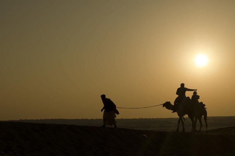 Silhouette Man Pulling Camels On Desert Against Sky During Sunset