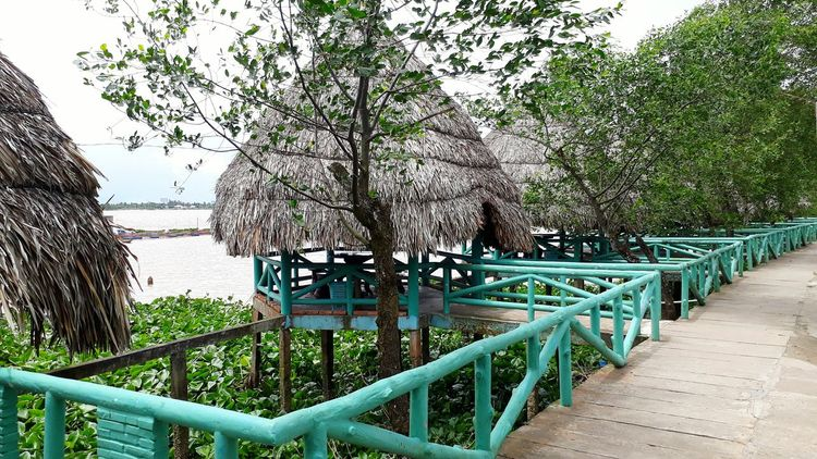 Day Railing Outdoors No People Beach Nature Tree Plant Growth Sea Water Sky Talking Pictures Travelling Photography Vietnam Summer Taking Photos Vacations Travelingtheworld  Vietnamtravel Travelingtheworld  LeisureTime Leisure Activity Travelingtheworld  Nature