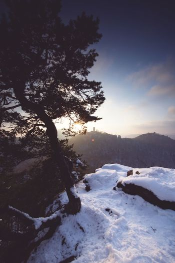 Trifelsland. EyeEm Best Shots Pfalz Snow Winter Cold Temperature Nature Tree Tranquil Scene Beauty In Nature Tranquility Landscape Sky Mountain Day No People Outdoors Scenics