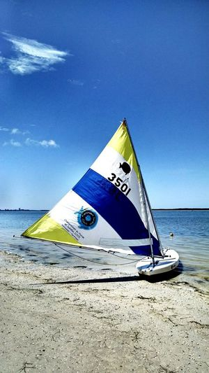 Sunfish Sailing Dunedin Causeway, Dunedin, FL Travel Photography Travel Travel Destinations Sailing Sport Adventure Shore Aquatic Sport Beauty In Nature Beach Photography Summertime Sea Beach Water Sand Sky Sailboat Moored Windsurfing Water Sport Nautical Vessel Plastic Environment - LIMEX IMAGINE The Street Photographer - 2018 EyeEm Awards The Great Outdoors - 2018 EyeEm Awards The Still Life Photographer - 2018 EyeEm Awards The Creative - 2018 EyeEm Awards The Traveler - 2018 EyeEm Awards The Photojournalist - 2018 EyeEm Awards Summer Road Tripping Summer Sports Summer In The City