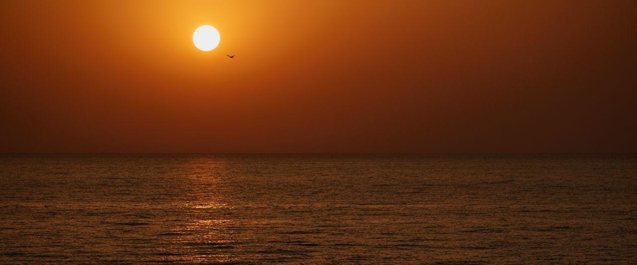 Landscape_Collection Night Lights Nightphotography Summertime Sunset_collection Batumi City Black Sea Bluehour Golden Hour Landscape_photography Sunset #sun #clouds #skylovers #sky #nature #beautifulinnature #naturalbeauty #photography #landscape EyeEmNewHere