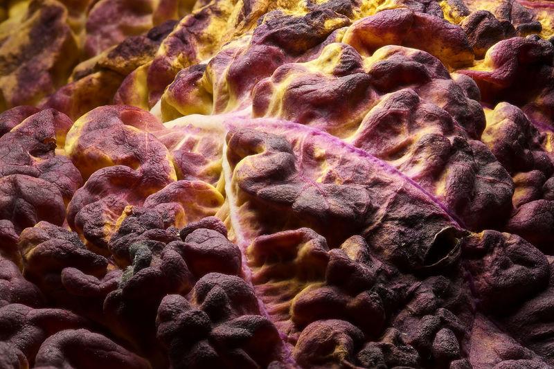 Detail shot of rocks
