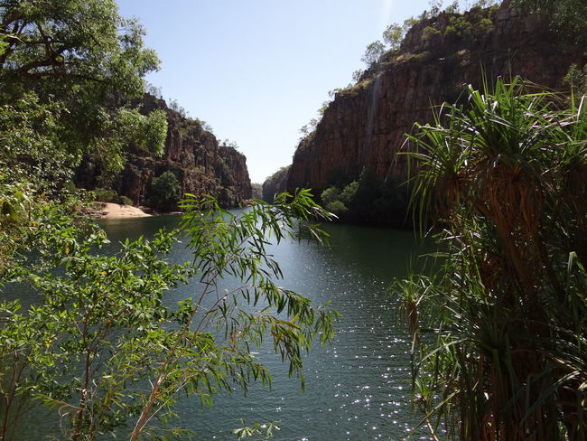Butterfly Gorge, Nitmiluk National Park, Katherine, Northern Territory, Australia Australia Australian Australian Landscape Kakadu National Park Katherine Katherine Gorge Katherine NT Australia Nitmiluk National Park Northern Territory Beauty In Nature Butterfly Gorge Clear Sky Day Green Color Growth Katherine National Park Mountain Nature Nitmiluk No People Non-urban Scene Outdoors Plant River Rock Scenics - Nature Sky Tranquil Scene Tranquility Tree Water