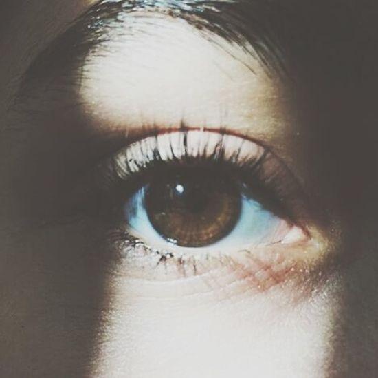 Eyes Brown Favorites Hashtags That's Me Nicephoto