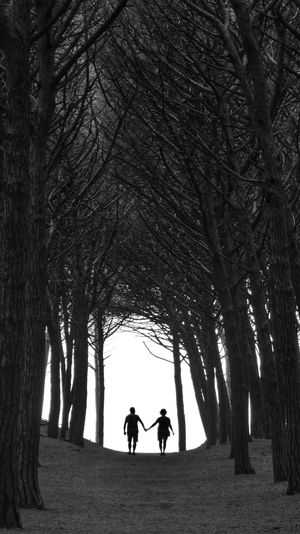 Silhouette couple walking amidst trees
