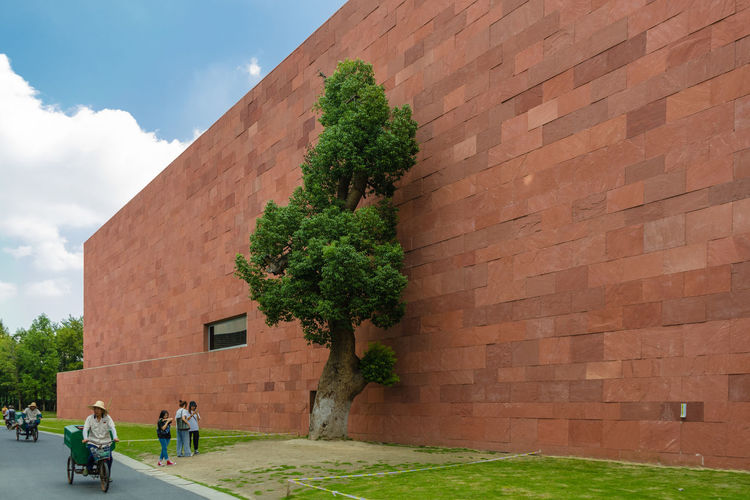 People standing by tree against building