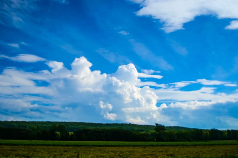 Sky Cloud - Sky Tranquil Scene Landscape Tranquility Environment Beauty In Nature Scenics - Nature No People Nature Idyllic Day Outdoors Land Field Non-urban Scene Plant Rural Scene Tree Blue