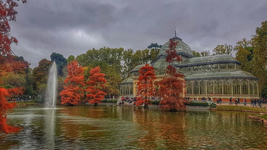 Palacio de cristal EyeEm Best Shots EyeEmNewHere EyeEm Nature Lover EyeEmBestPics EyeEm Best Shots - Nature Reflection Tranquility Taking Photos Tranquil Scene Travel Destinations Travel Scenics Scenics - Nature City Cityscape Colors Beauty In Nature Nature People Autumn Autumn🍁🍁🍁 First Eyeem Photo Exceptional Photographs Thankful✨ Water Tree Sky Architecture Building Exterior Built Structure