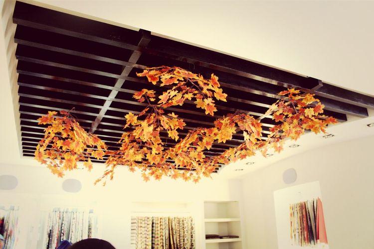 Vania Showroom. Interior Design