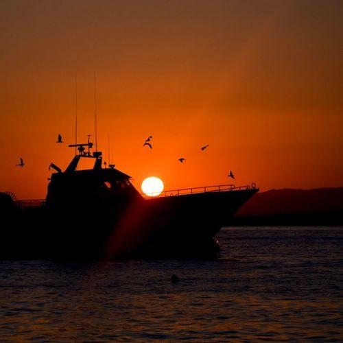 Boats... EyeEm Best Shots EyeEm Best Shots - Sunsets + Sunrise Beachphotography EyeEm Best Shots - No Edit