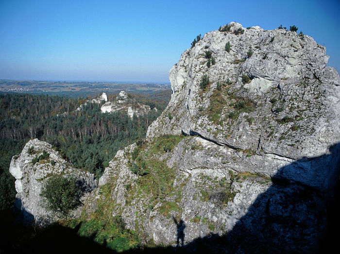 Jura Jura Krakowska Jura Krakowsko Czestochowska Jurrasic Nature Outdoors Rock Rock - Object Rock Formation Rock Formations Rocky Mountains Zborow Zborow