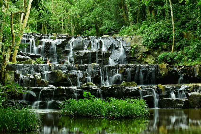 Waterfalls Water Reflection Green Color Tree Outdoors No People Waterfront Day Nature Motion Growth Beauty In Nature