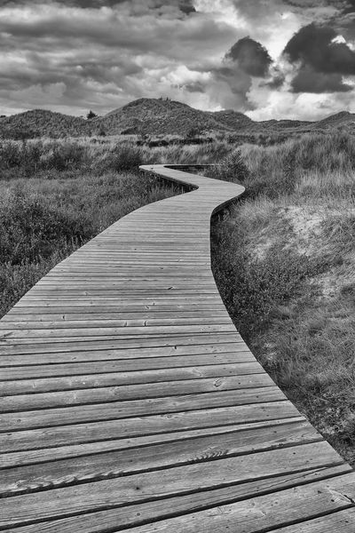 ✨Der Weg✨Herbert Grönemeyer Cloud - Sky Outdoors Nature Beauty In Nature Landscape Travel Destinations No People Sand Dune Black & White Photography Walking Black And White Black And White Collection  Way To Go Dramatic Sky The Week On EyeEm Sky_ Collection Sky Photography Walking Around Taking Pictures From My Point Of View Eyeem Market Wood Art Tranquility Beauty In Nature Wooden Path Way Forward Lost In The Landscape Connected By Travel EyeEmNewHere Second Acts Perspectives On Nature Rethink Things Postcode Postcards Be. Ready. Black And White Friday Step It Up One Step Forward EyeEm Ready   AI Now An Eye For Travel Go Higher Visual Creativity Summer Exploratorium Going Remote Focus On The Story #FREIHEITBERLIN The Architect - 2018 EyeEm Awards The Great Outdoors - 2018 EyeEm Awards The Traveler - 2018 EyeEm Awards The Creative - 2018 EyeEm Awards Creative Space Summer Road Tripping Summer Sports HUAWEI Photo Award: After Dark #urbanana: The Urban Playground My Best Travel Photo A New Beginning Autumn Mood This Is Natural Beauty Holiday Moments