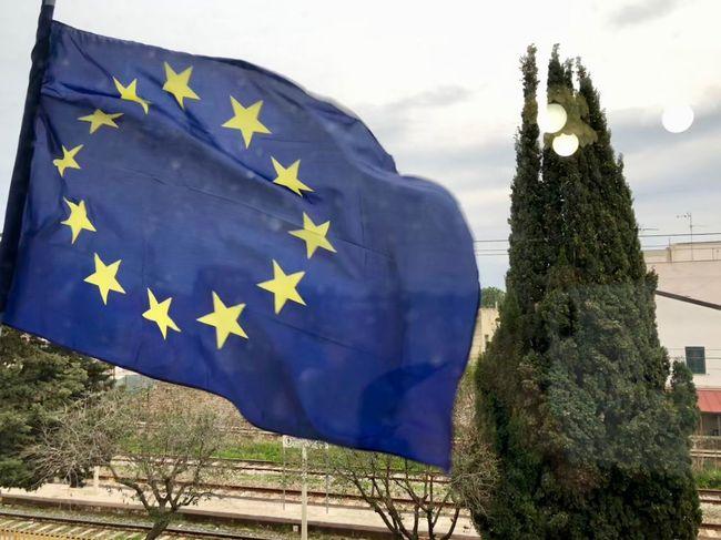 Europa di... riflesso (che è meglio). Europe Flag Patriotism Tree No People Outdoors Sky Day Close-up