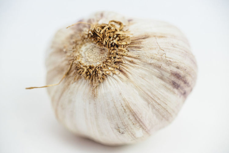 Close-Up Of Garlic Bulb Over White Background
