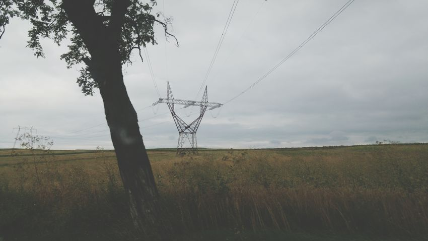 Electricity  Electricity Pylon Electric Wires Tree Sky Clouds Countryside Suceava County Romania Bucovina EyeEm Best Shots EyeEm Nature Lover Nature