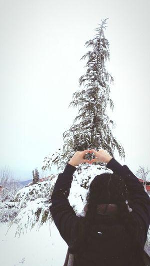 Snow ❄ Winter❤