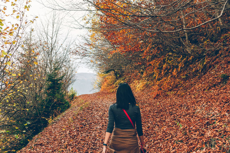 Rear view of woman walking on autumn leaves
