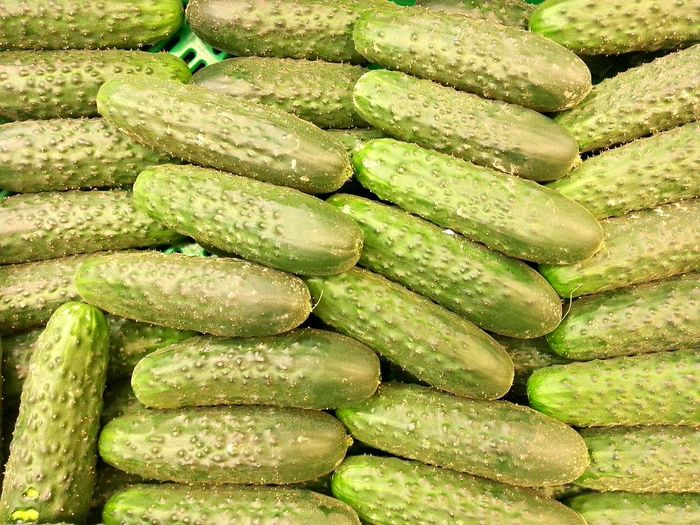 For the salad Food Food And Drink Large Group Of Objects Healthy Eating Freshness Indoors  No People Day Close-up Market Stall For Sale Retail  Market Pepino Pepinos Cucumber Cucumbers Cuke Cukes