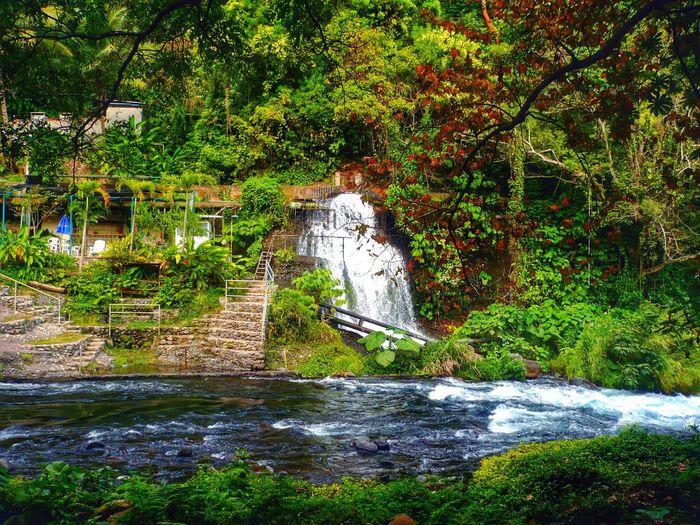Mexico Y Su Naturaleza Veracruz, México Waterfall Awesome Nature Actopan Perfectday