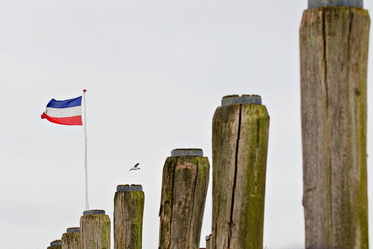Low angle view of flags on wooden post against sky