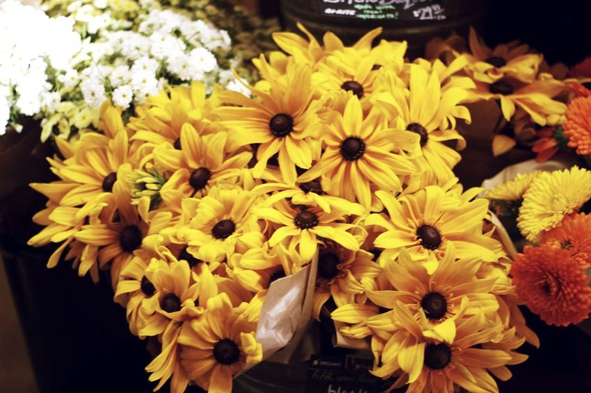 Local flowers in a San Franciscan grocery store Flower Nature Yellow Petal Plant Blooming Bouquet San Francisco
