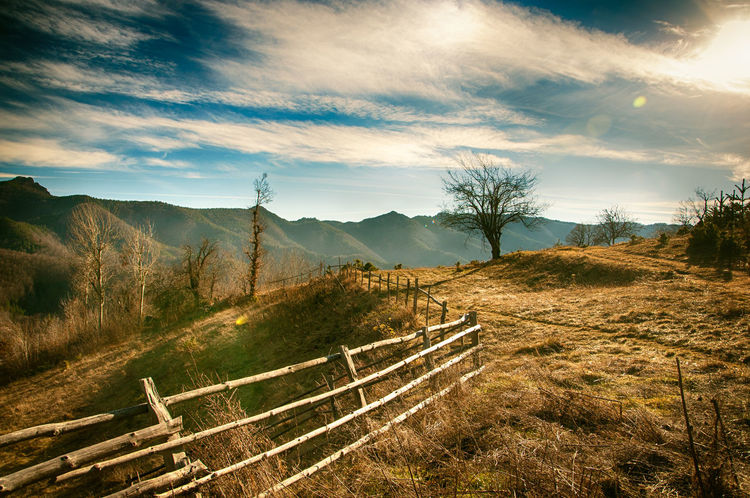Meadow Fence Tree Cloudy Sky Good Weather Beauty Of Nature Mountains