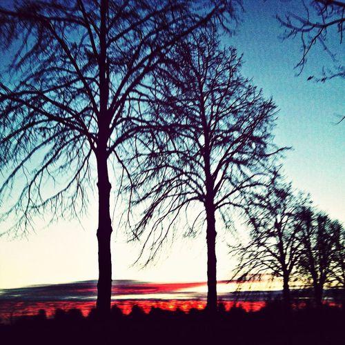 Sonnenaufgang 31.12.2013