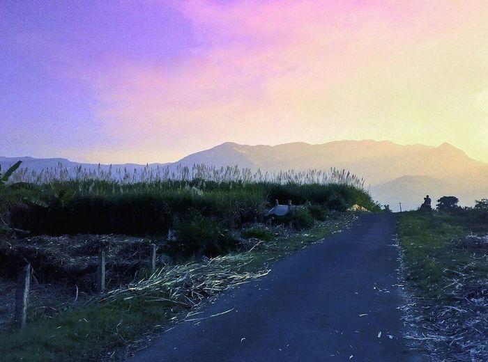 A colorful evening Hanging Out Sunlight ☀ Sunset #sun #clouds #skylovers #sky #nature #beautifulinnature #naturalbeauty #photography #landscape sunset Outdoors romantic sky Romantic rural areas Travel travel destinations Munnar India Kerala India Landscape Nature