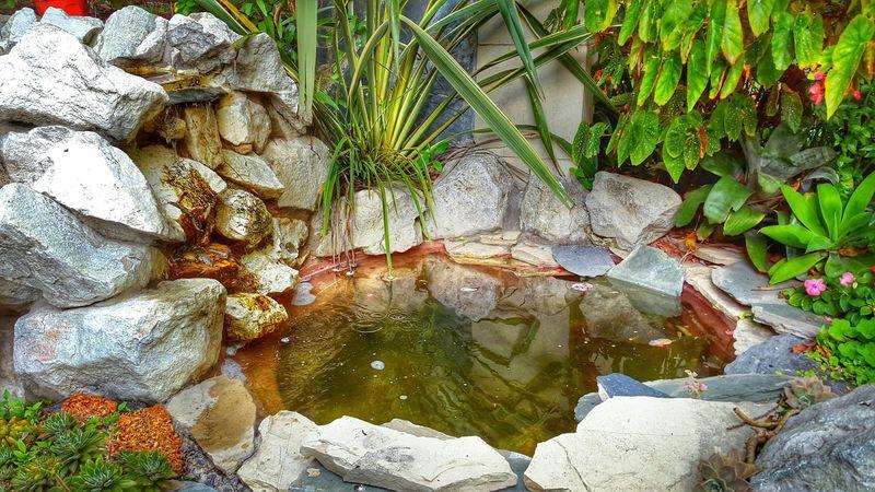Fuente❤Agua Fuente Agua Piedras Water Reflections Water_collection