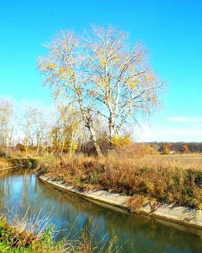 Autumn Sunnyday Coloroflife