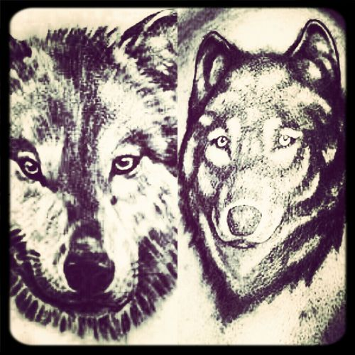 1 Or 2 Whick Look Better