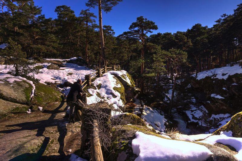 La Boca del Asno Spaın Segovia,spain Segovia Boca Del Asno Waterfall River Snow Winter Nature Tree Cold Temperature Tranquility Beauty In Nature Tranquil Scene Sunlight Outdoors Day Scenics Landscape Sky Shades Of Winter