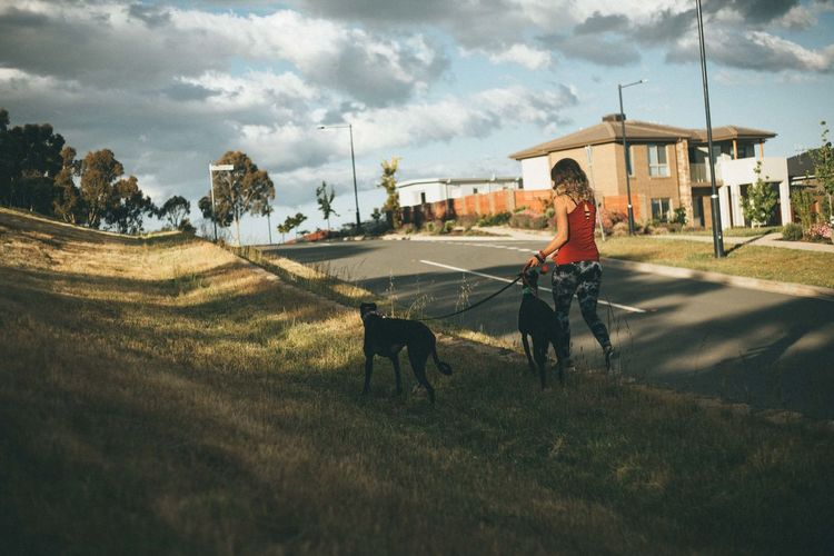 Rear view of young woman with dogs walking on footpath