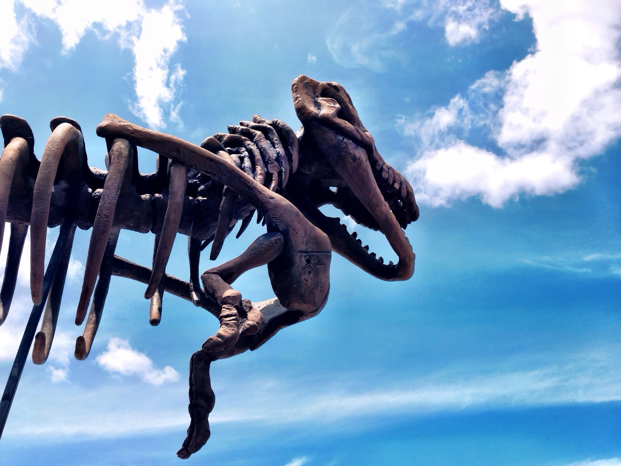 sky, low angle view, cloud - sky, blue, cloud, metal, animal themes, outdoors, animal representation, day, rope, cloudy, close-up, no people, nature, one animal, rusty, metallic, hanging, sunlight