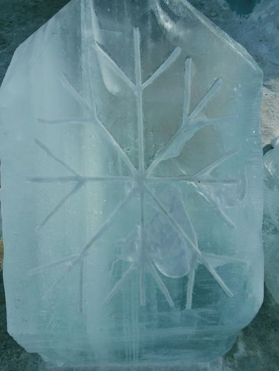 ice block snow flake carved in❄ Frozen Nature Ice Blocks Ice No People Symmetry Indoors  Close-up Day