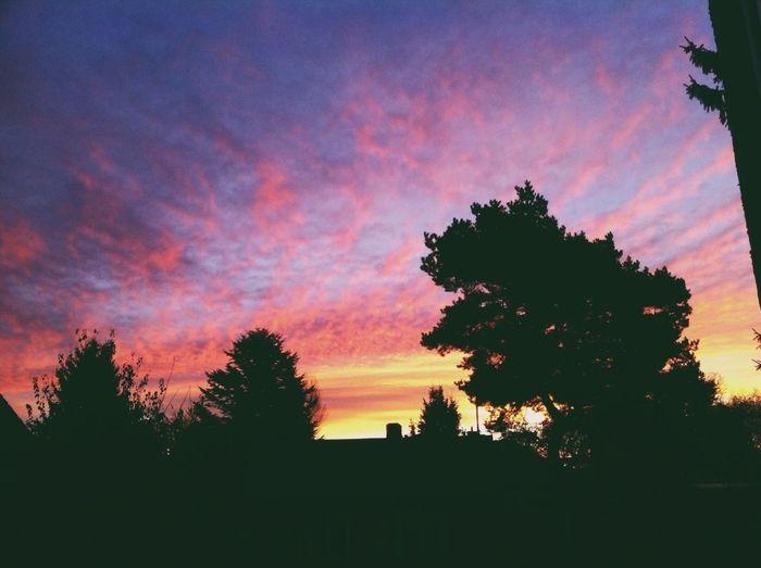 Morning Sunrise Colors Followme