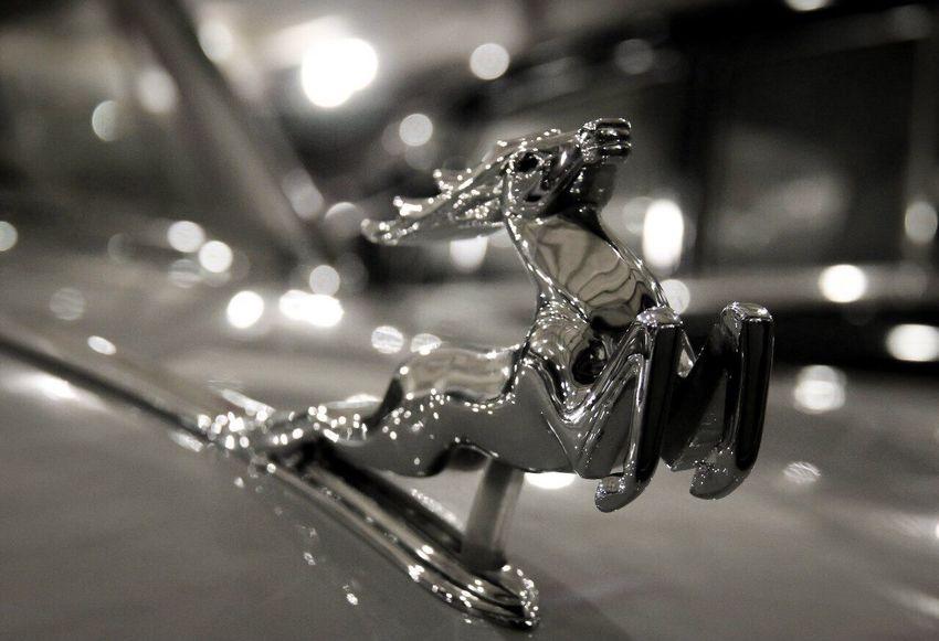 🐎 Chrome Car Retrocar Horse